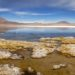 Exploring The Altiplano & Salar de Uyuni, Bolivia